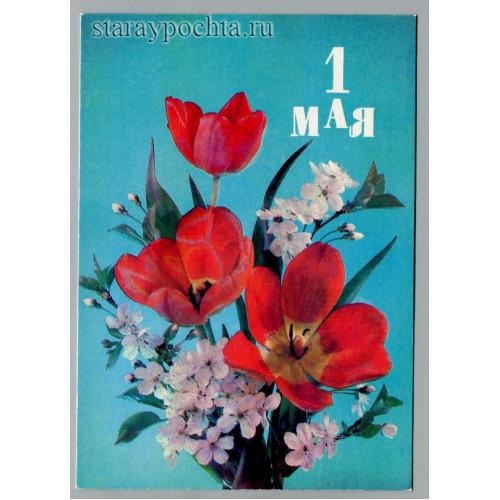Открытка с праздником 1 мая! лот  1079
