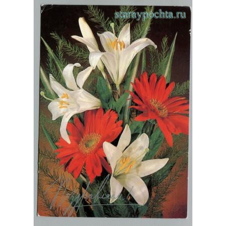 Поздравительная почтовая открытка лот 1010