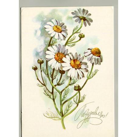 Поздравительная почтовая открытка лот 11523