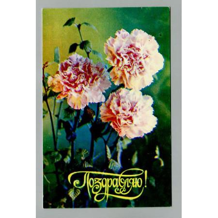 Поздравительная почтовая открытка лот 11527
