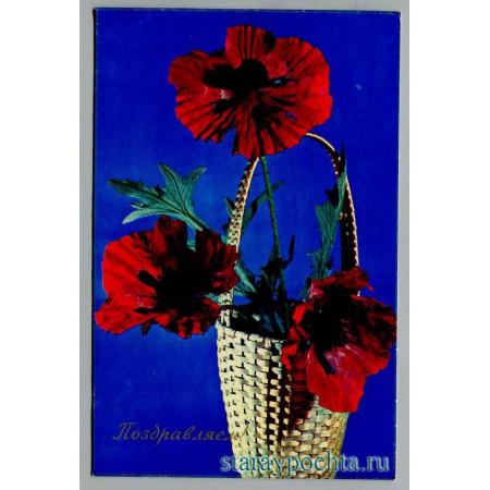 Поздравительная почтовая открытка лот 1345