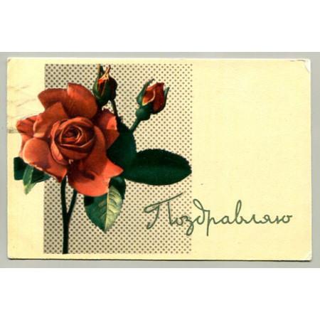 Поздравительная почтовая открытка лот 16470