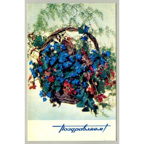 Поздравительная почтовая открытка лот 16574