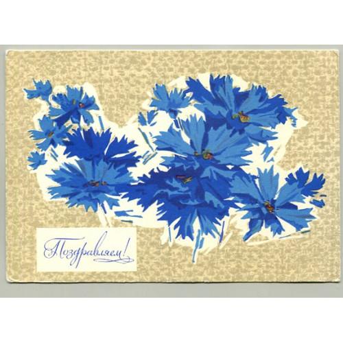 Поздравительная почтовая открытка лот 16628
