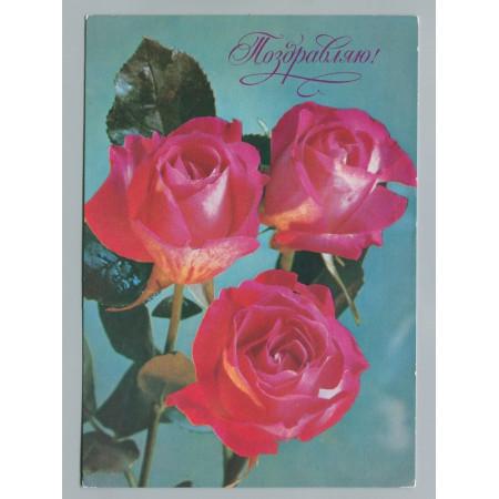 Поздравительная почтовая открытка лот 1808