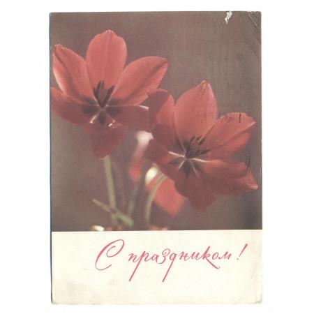Поздравительная почтовая открытка лот 1865