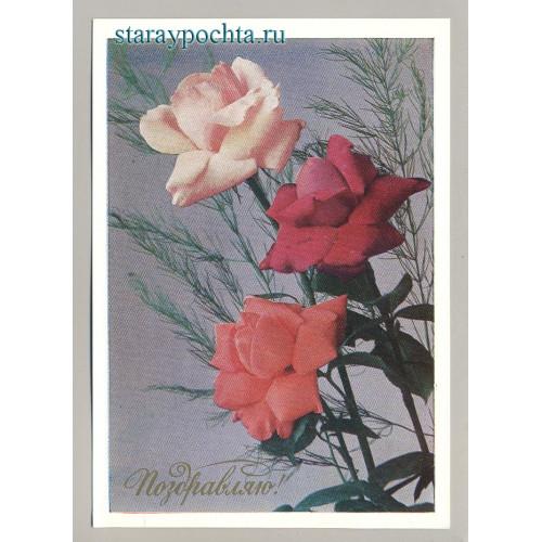 Поздравительная почтовая открытка лот 245