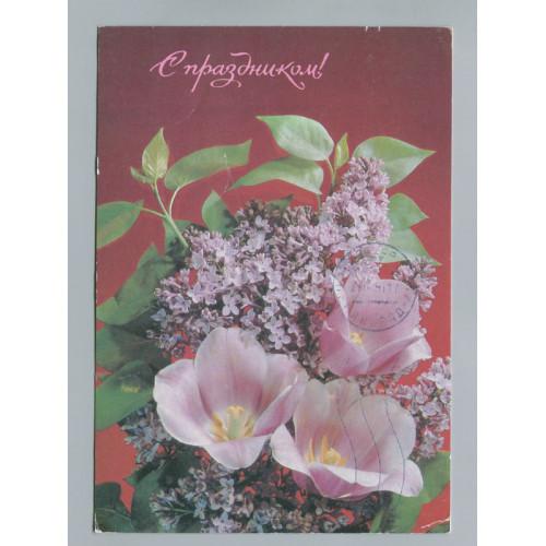 Поздравительная почтовая открытка лот 2726