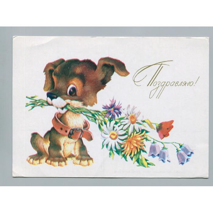 Поздравительная почтовая открытка лот 2731