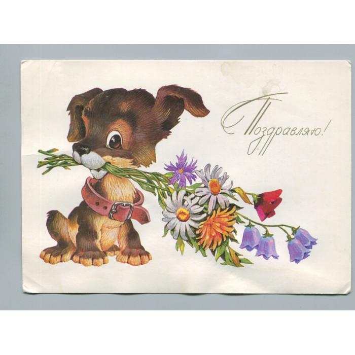 Поздравительная почтовая открытка лот 2733