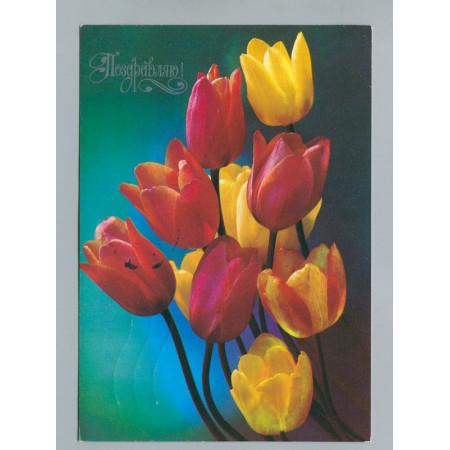 Поздравительная почтовая открытка лот 2735