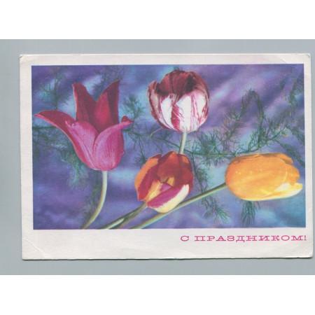 Поздравительная почтовая открытка лот 2748