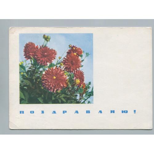 Поздравительная почтовая открытка лот 2757