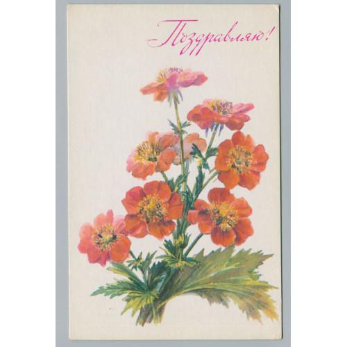 Поздравительная почтовая открытка лот 2896