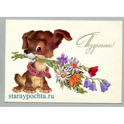 Поздравительная почтовая открытка лот 724