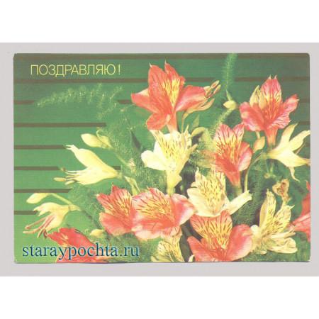 Поздравительная почтовая открытка лот 87