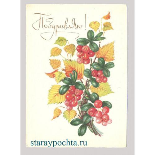 Поздравительная почтовая открытка лот 94