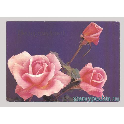 Поздравительная почтовая открытка лот 95