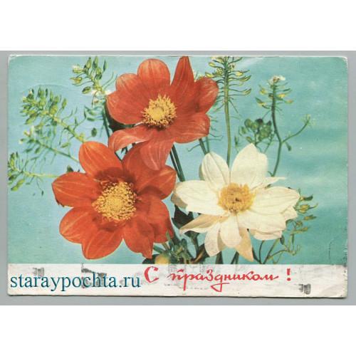 Поздравительная почтовая открытка лот 996